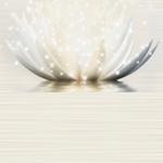 magic-lotus